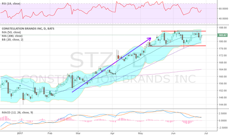 STZ: Consolidation into earnings with size at 185 & 195 on call side