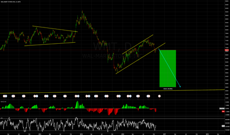 WMT: Do you want to short Wal-Mart with me? 30% is waiting you