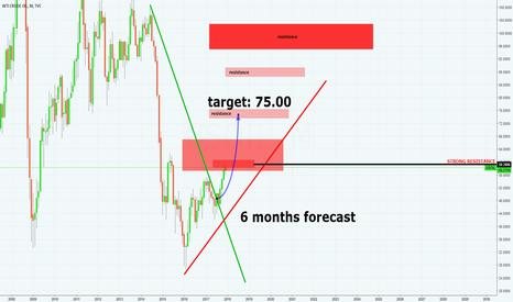 USOIL: WTI • 6 months forecast • target 75.00