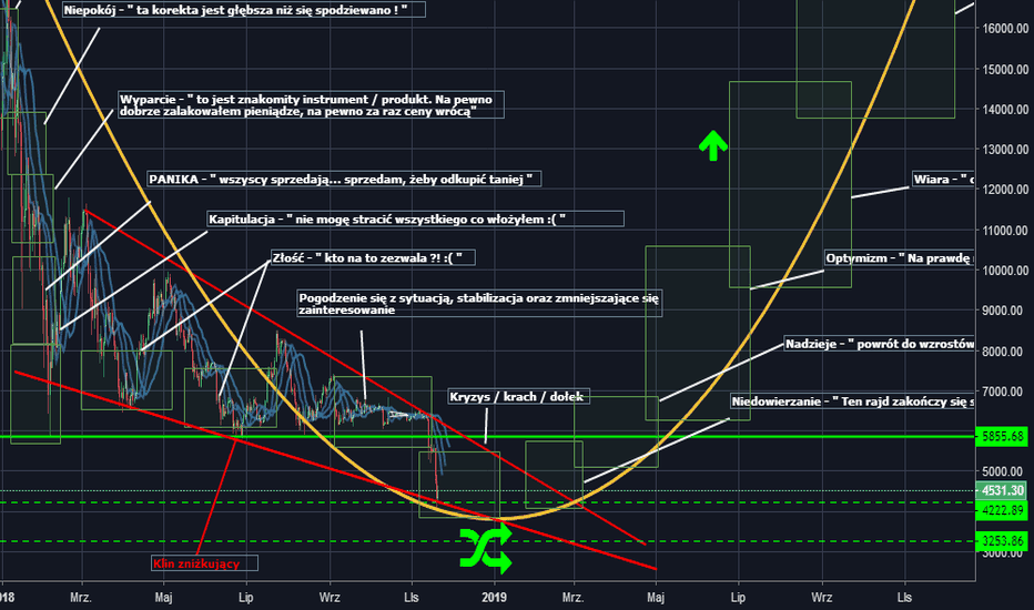 BTCUSD: Psychologia cyklu rynkowego na przykładzie BTC/USD wg. Wall St.