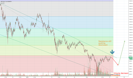 XBTUSD: I'm still pawsitively bearish short-term