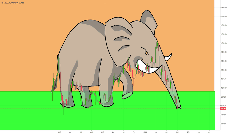 INDIGO: Elephant crushing  INDIGO