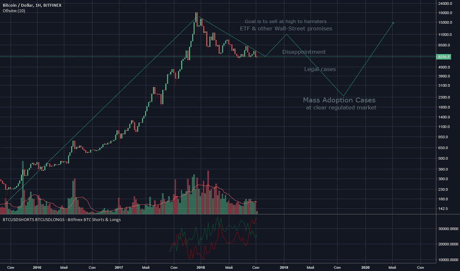 BTCUSD: What can happen next year