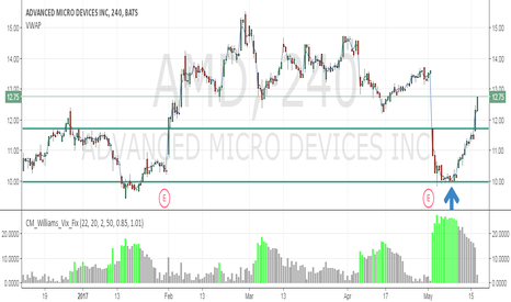 AMD: AMD Bottom Buy