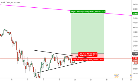 BTCUSD: btc/usd long term