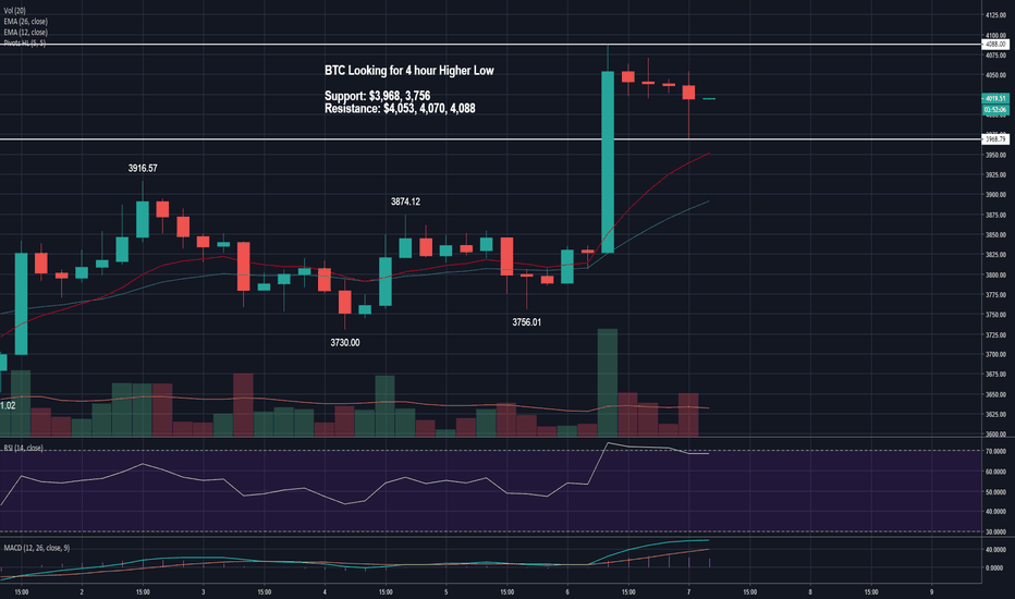 BTCUSD: BTC Looking for a 4 hour Higher Low