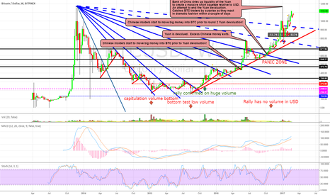 "BTCUSD: BTC WEEKLY CHART:  ""The Panic Zone"" She's got Legs"