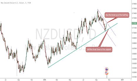 NZDUSD: Kiwi at a critical junction