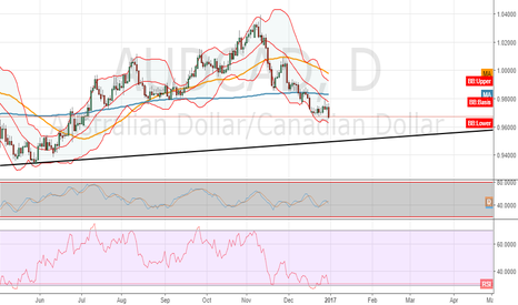 AUDCAD: hug that bear