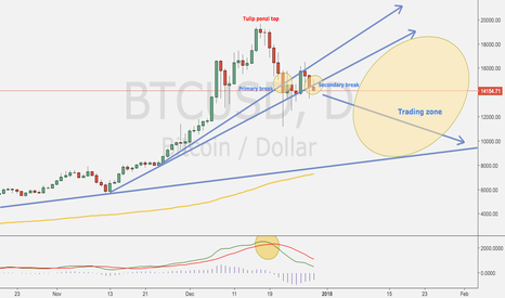 BTCUSD: Bitcoin tulip ponzi top