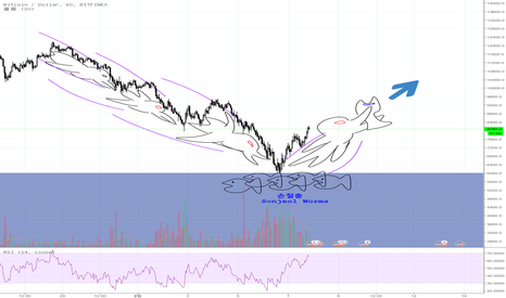 BTCUSD: #BTCUSD #손절충 사냥! #HUNTING! SONJEOL WORMS