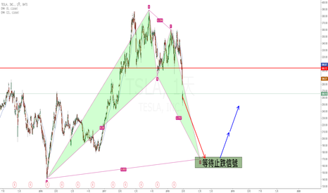 TSLA: 特斯拉(TSLA)看多蝙蝠型態交易機會