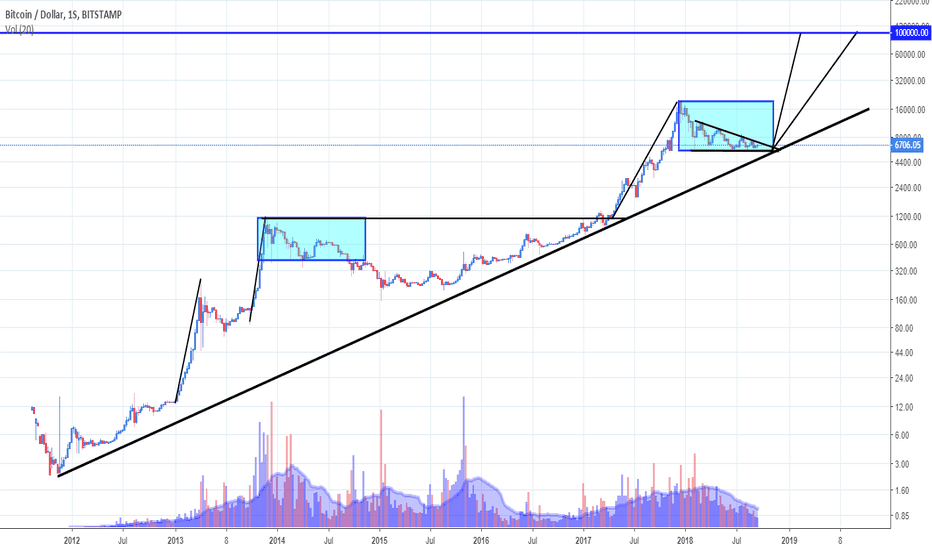 BTCUSD: Bitcoin no longo prazo! (100k USD)