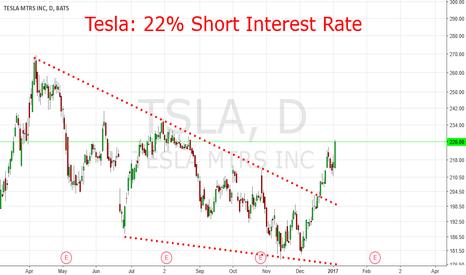 TSLA: Tesla: 22 % Short Interest Rates