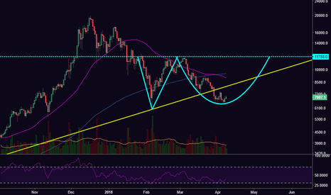 BTCUSD: Possible Adam & Eve Reversal Forming Long-Term [BTCUSD]
