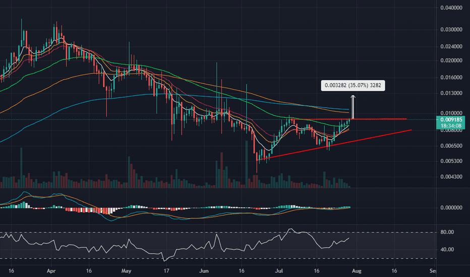 mft btc tradingview)