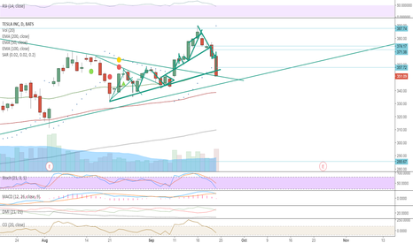 TSLA: TSLA is about to bounce on support line