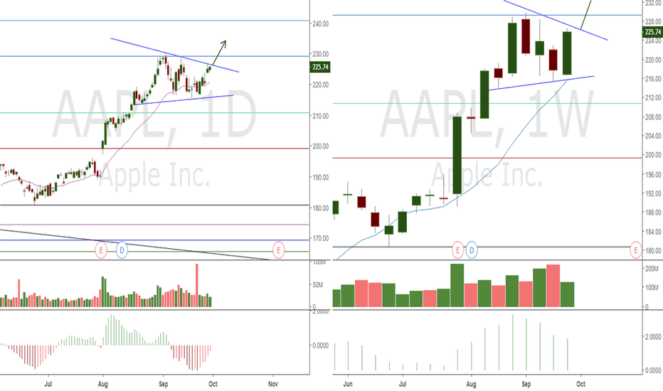 AAPL: Week 1 AAPL: Apple to 234+