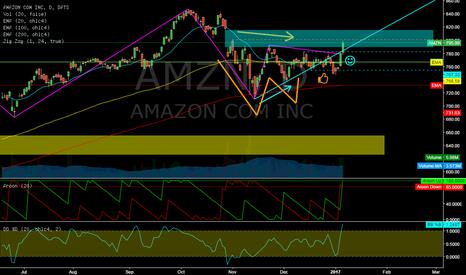 AMZN: AMZN @ daily @ will bulls recapture 820$ price this january`17 ?