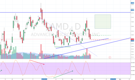 AMD: AMD TL Bounce Stochastic Divergence