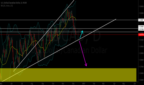 USDCAD: Will retest Daily Trendline or Break Out Trendline???
