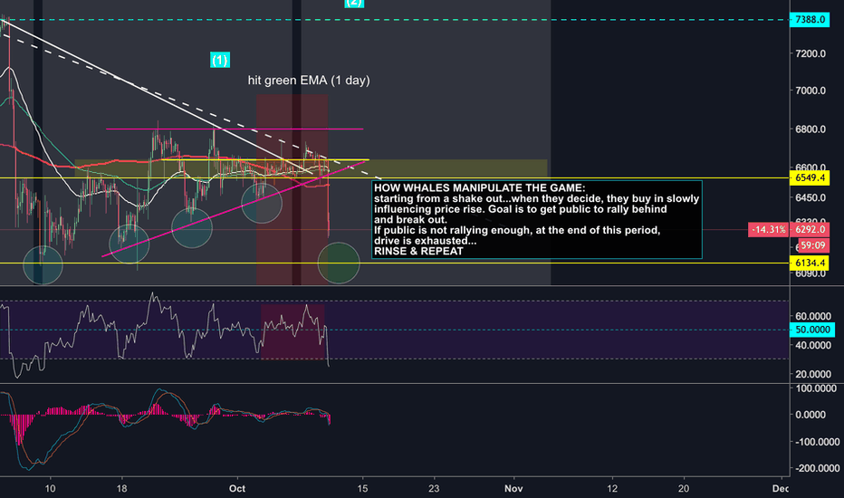 BTCUSD: The Secret BTC Manipulation Strategy Of The Whales Exposed?