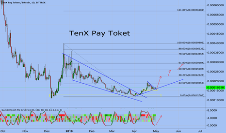 PAYBTC: TenX Pay Token