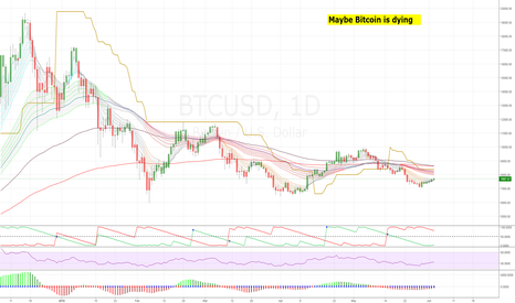 BTCUSD: Change of perspective: Maybe Bitcoin is dying