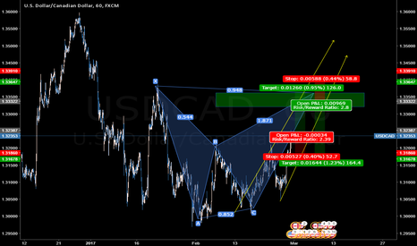 USDCAD: USDCAD-butterflypatern-small channel