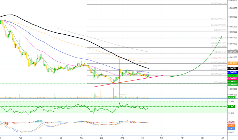 ENGBTC: Enigma Starts To Move [ENGBTC][550% Profits Potential]