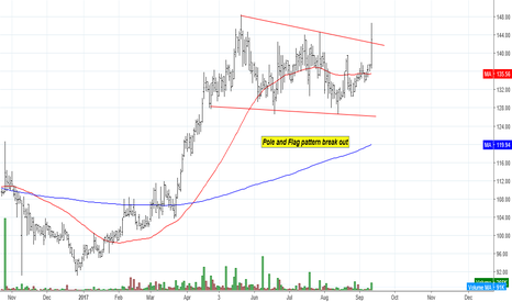 EIHOTEL: EIH Hotel : Pole and Flag pattern break out
