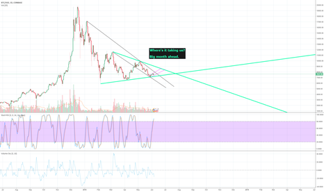 BTCUSD: BITCOIN/USD - BIG MONTH AHEAD. WHERE TO?