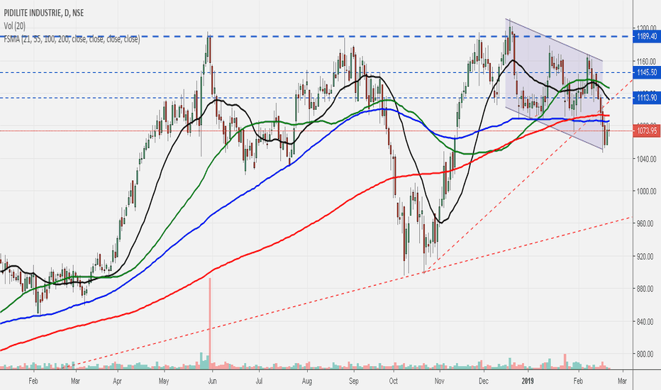 PIDILITIND: Pidilite.. topped out?