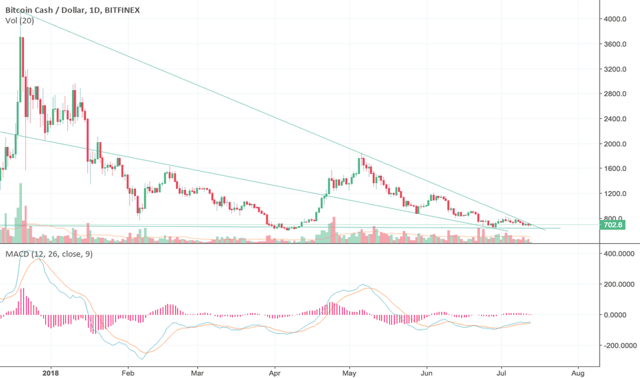 BCHUSD: Breakout in any second !! Long bitcoin cash ( BCH )