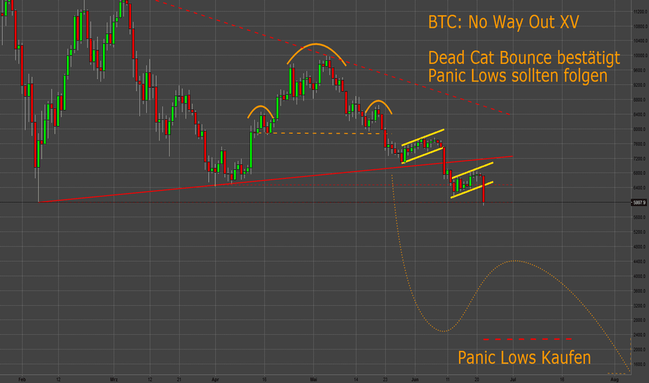 BTCUSD: BTC: No Way Out (XV) - Panic Lows nach Dead Cat Bounce kaufen