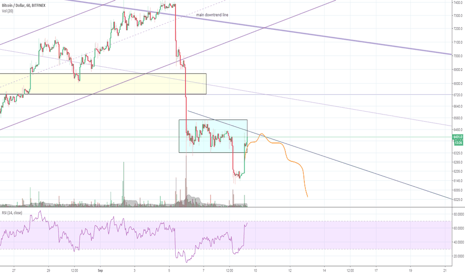 BTCUSD: Bitcoin - The fall continues