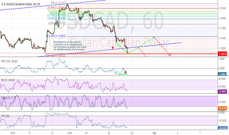 USDCAD: RSI oversold levels, STOCH,% R.