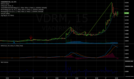 VDRM: $1.25 Price target (65k shares)