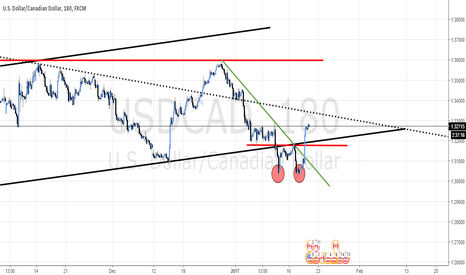 USDCAD: USD/CAD - FALSE BREAK AND A DOUBLE BOTTOM TRIGGERED