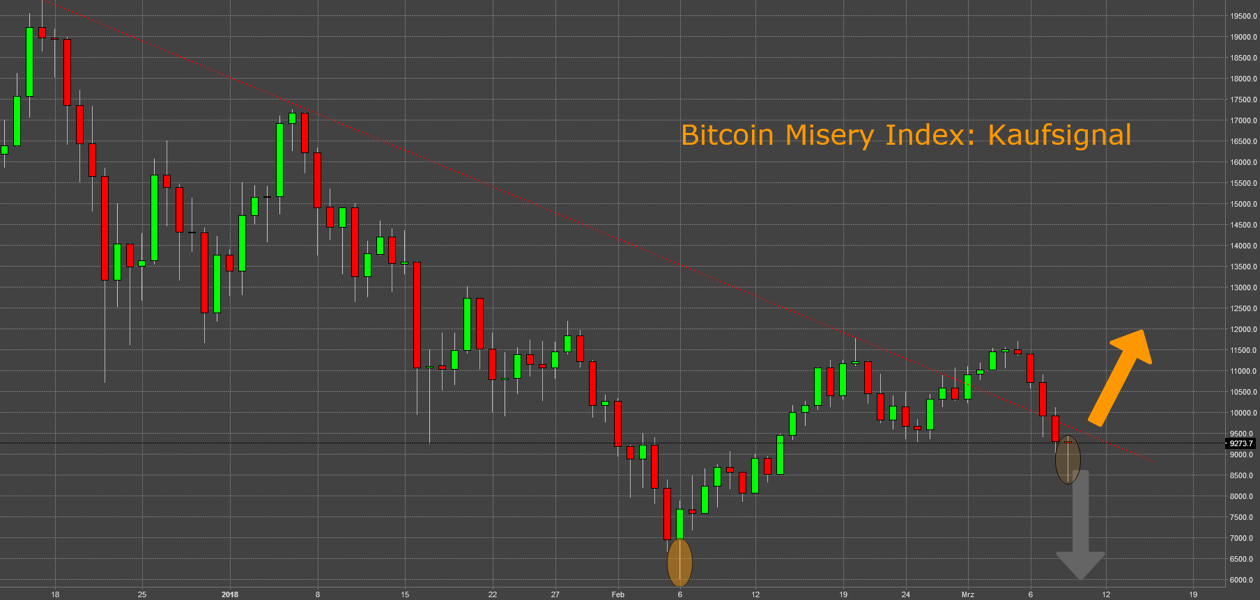 Bitcoin Misery Index: Kaufsignal