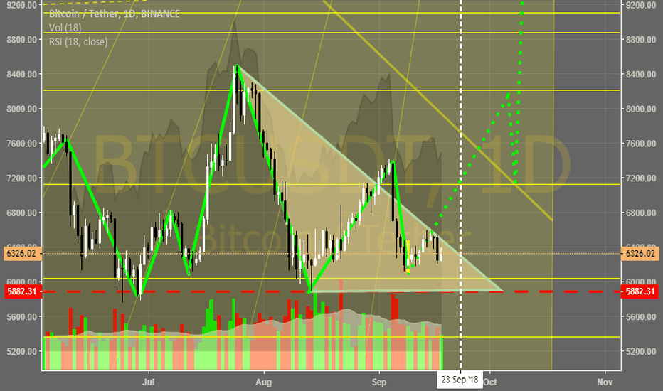 BTCUSDT: BTC heading up. predumping and mooning