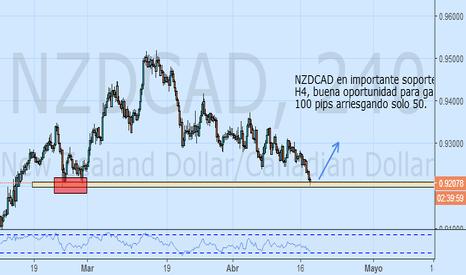 NZDCAD: Comprar NZDCAD en soporte importante H4