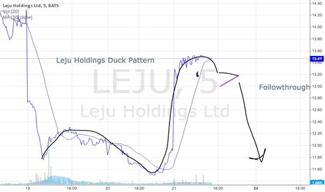 LEJU: More follow through ahead for Holdings?