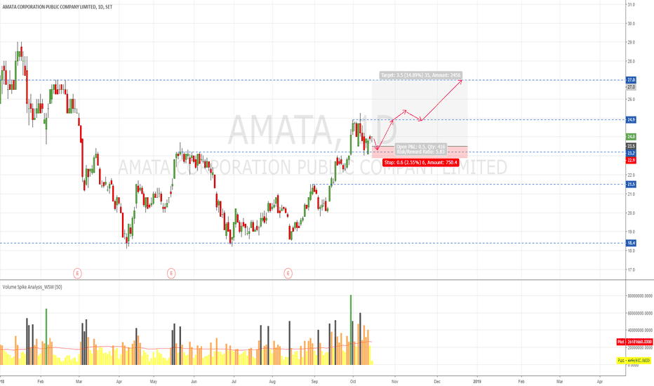 AMATA: AMATA Action Plan