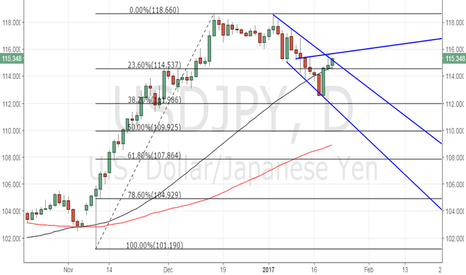 USDJPY: USD/JPY could revisit 116.04