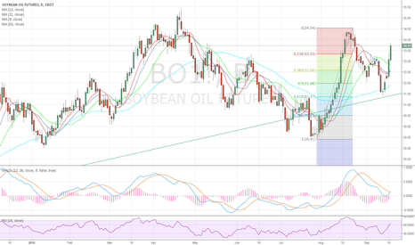 BO1!: MACD cross on a daily basis