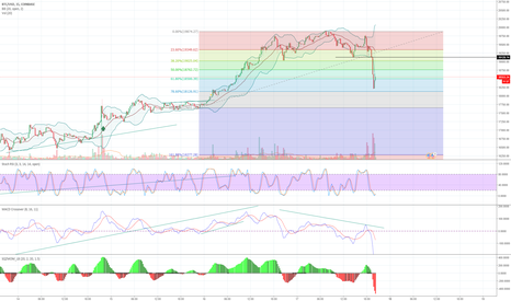 BTCUSD: And there She Goes Mini Dump