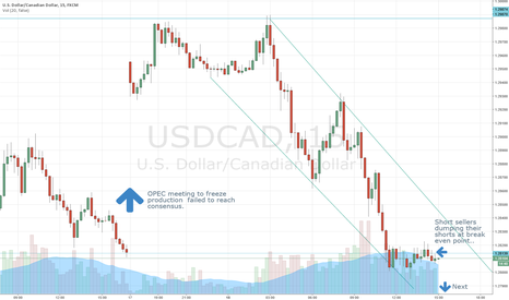 USDCAD: Sell Them Short