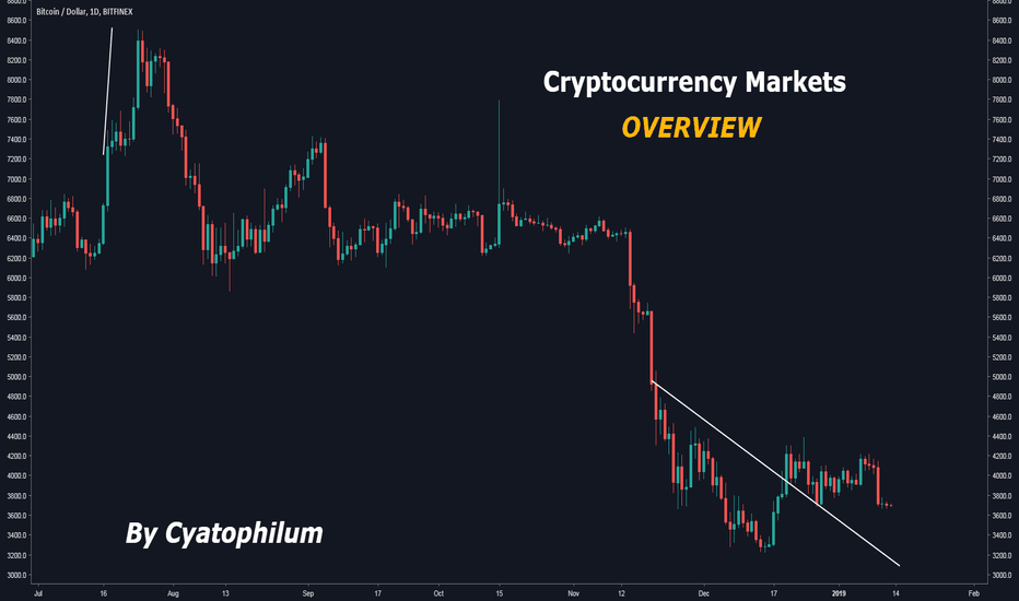 BTCUSD: Cryptocurrency Markets Overview (BTC, ETH, XRP, EOS ...)