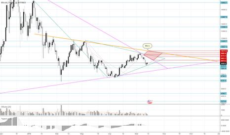 BTCUSD: 1D Bitcoin Trend (BTC/USD) - Bitfinex